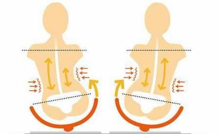 体幹の安定感をUP!『お尻歩き体操』のやり方