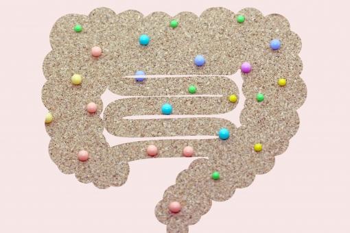 『腸内細菌』をコントロールして集中力と気分を改善する方法