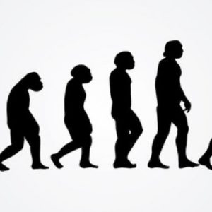 成長する人・しない人…『決定的な違い』- コンフォートゾーンとは -
